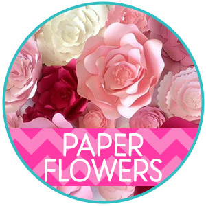 Paper Flower & Bows